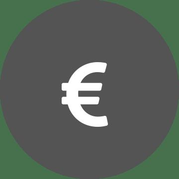 Bijeli simbol eura na pozadini sivog kruga